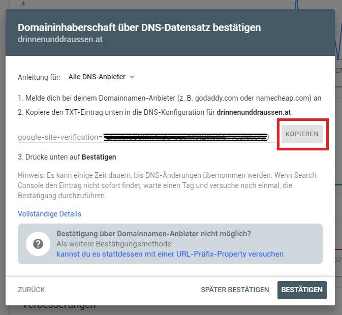 2_TXT Eintrag kopieren Google Search Console Webseite einreichen mit DNS